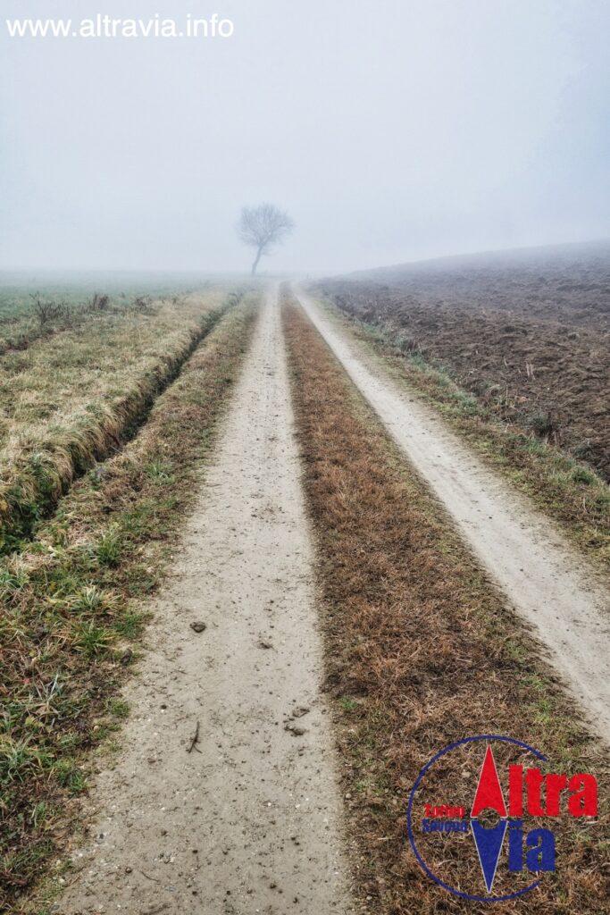 4006 verso la nebbia