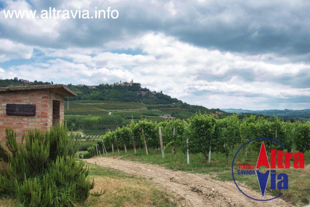 4048 panorama Magliano