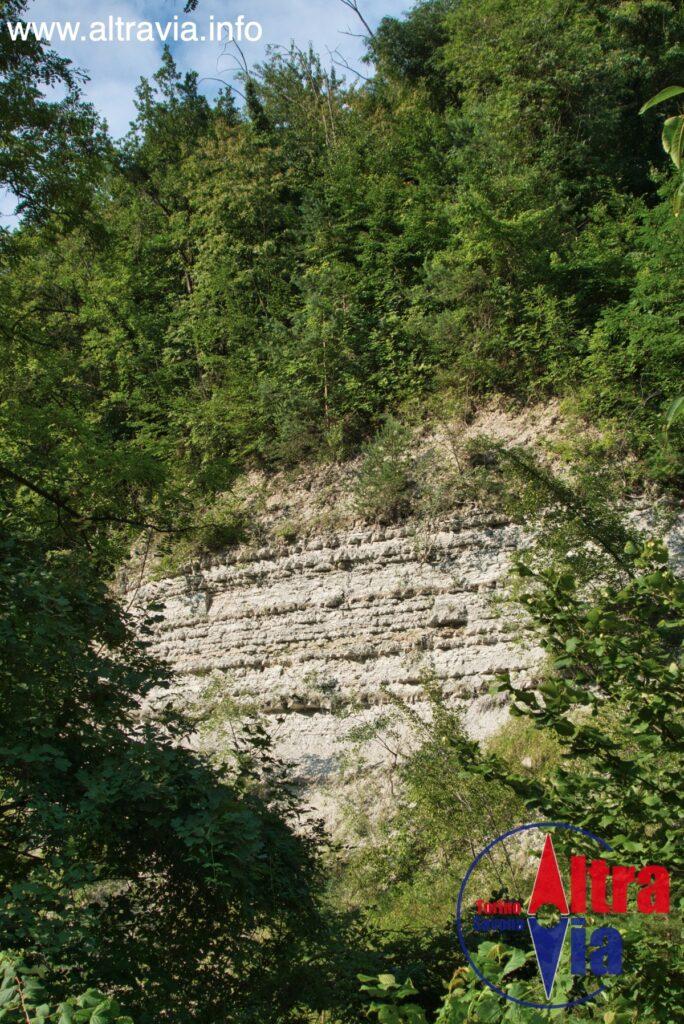 5005 rocce sedimentarie
