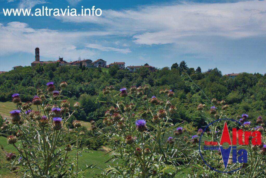 5045 Serravalle veduta